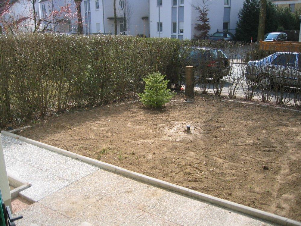 Rollrasen Garten Mutze Worms Abenheim